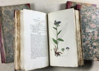 English Botany; or, Coloured Figures of British Plants, with their Essential Characters,...