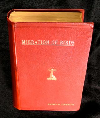 The Migration of Birds: as observed at Irish Lighthouses and Lightships including the original...