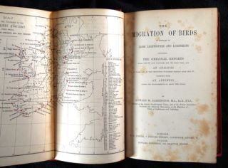 The Migration of Birds: as observed at Irish Lighthouses and Lightships including the original reports from 1888-97, now published for the first time, and an analysis of these and of the previously published reports from 1881-87: together with an Appendix giving the measurements of about 1600 wings.