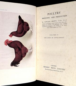 Poultry Breeding and Production: the two volumes: Vol I: Races and Breeding of Domestic Poultry; Vol II: The Lines of Development.